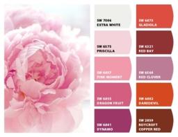 Lựa chọn màu sắc cho không gian của bạn